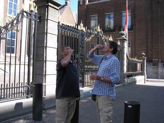 Гаага, Голландия, июль 2010